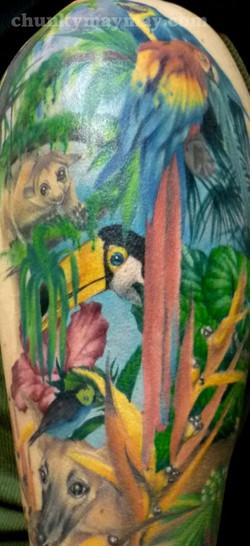 jungle 2012.jpg