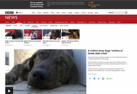A MILLION STRAY DOGS 'VICTIMS OF GREEK DEBT CRISIS'