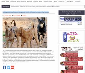 SICILIA: RANDAGISMO, NELLA FINANZIARIA REGIONALE 20 MLN AI COMUNI PER NUOVI RIFUGI SANITARI