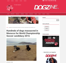 HUNDREDS OF DOGS MASSACRED IN MOROCCO FOR WORLD CHAMPIONSHIP SOCCER CANDIDACY 2026