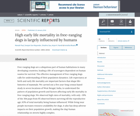 High early life mortality in free-ranging dogs is largely influenced by humans