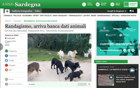SARDEGNA:RANDAGISMO, ARRIVA BANCA DATI ANIMALI