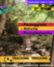 TRACKING&TREKKING POST_SASSELLO (2).png