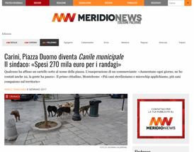 CARINI, PIAZZA DUOMO DIVENTA CANILE MUNICIPALEIL SINDACO: «SPESI 270 MILA EURO PER I RANDAGI»