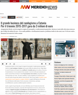 IL GRANDE BUSINESS DEL RANDAGISMO A CATANIA PER IL TRIENNIO 2015-2017: GARA DA 3 MILIONI DI EURO