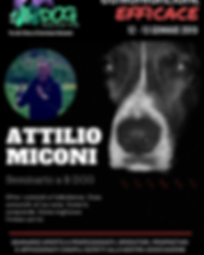 MiCONI_poster.png