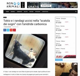 """TOKIO E I RANDAGI UCCISI NELLA """"SCATOLA DEI SOGNI"""" CON L'ANIDRIDE CARBONICA"""
