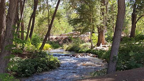 Beautiful creek at Bishop Elks Park