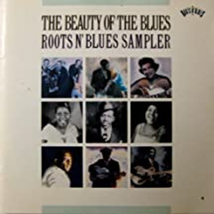 Various Artist / The Beauty Of The Blues