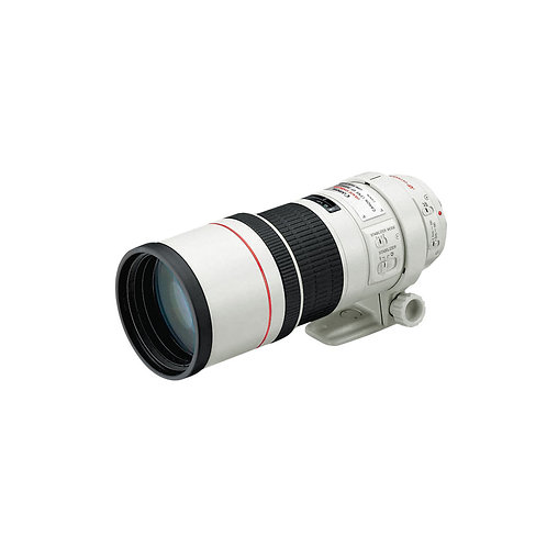 Canon EF300mm F/4L IS USM