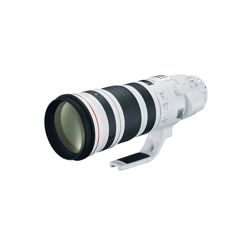 Canon EF200-400mm F/4L IS USM Extender 1.4x