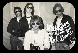 White Boy and the Average Rat Band