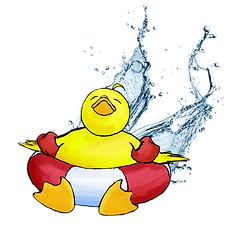 duck 8.png
