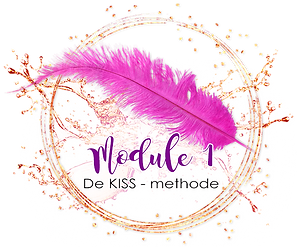 Module 1 kiss methode.png