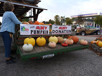 Pumpkin 2020 trailer rear, Amy.jpg