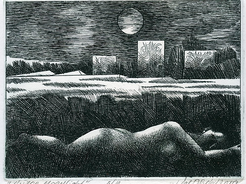 "Under Moonlight. Series ""Forgotten Meadow""."