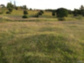 Elgin commercial land.jpg