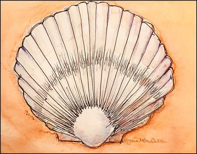 Sea Shell 5x7