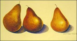 Three Pears 9x5 (sold)