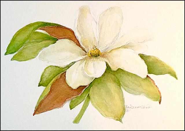Magnolia 5x7