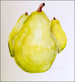 Love Pears 4x6