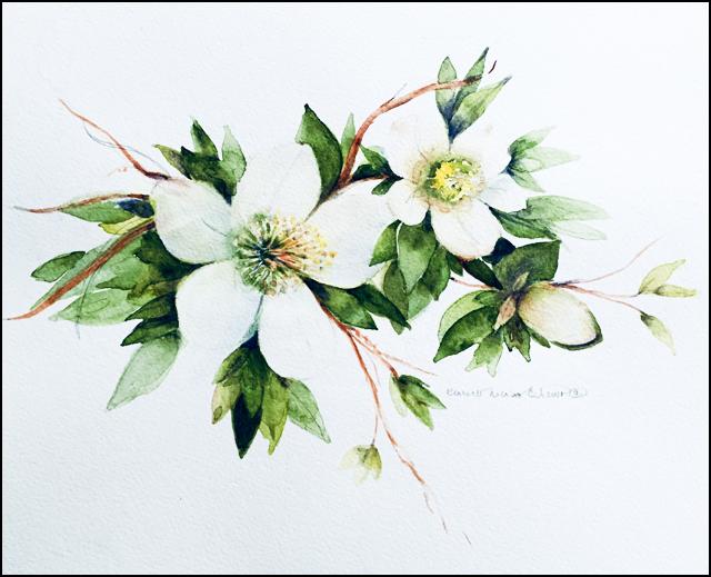 White Flowers 11x14