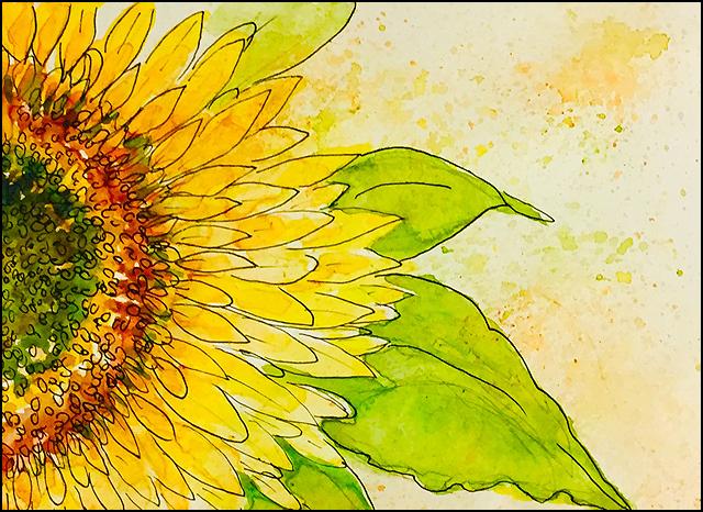 August Sunflower 5x7