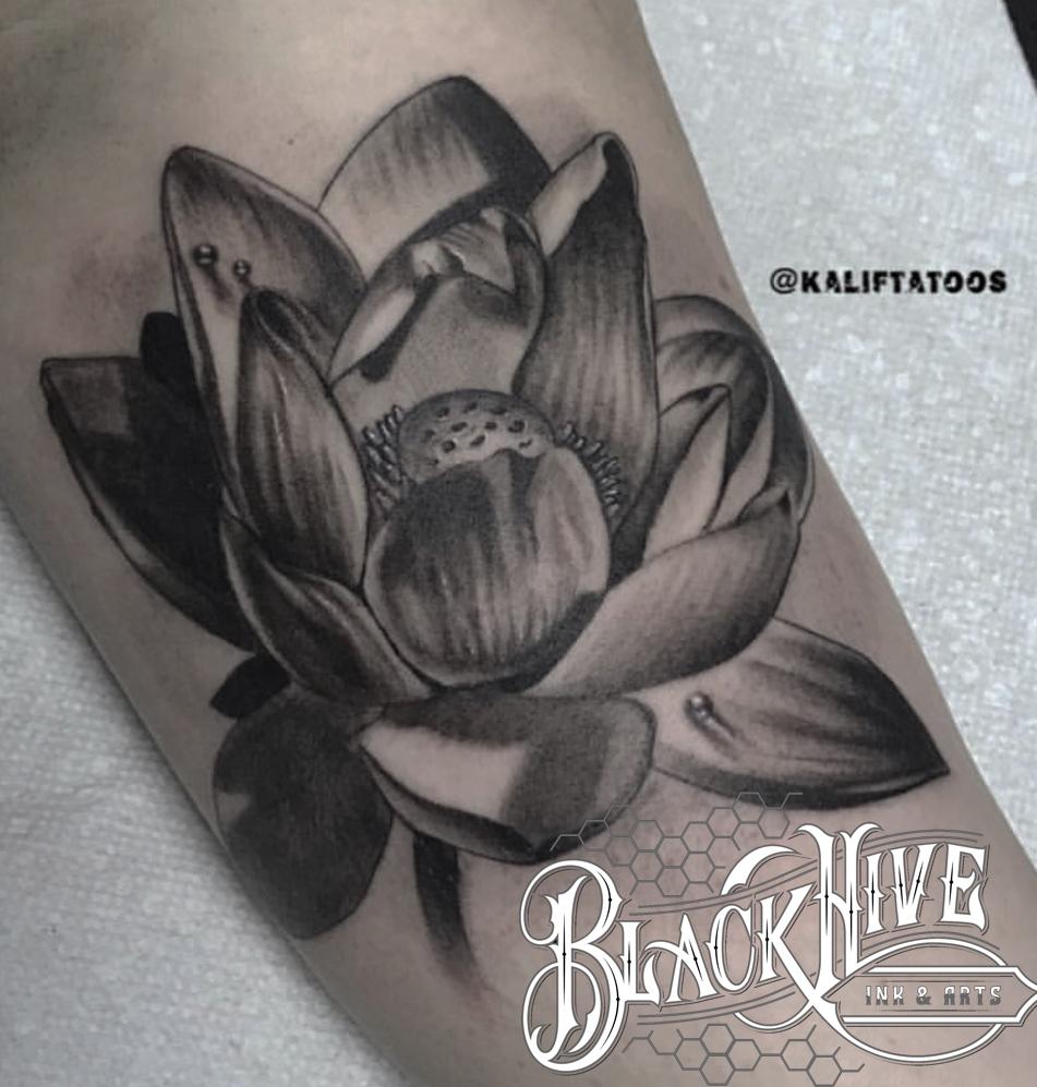 LOTUS best black and grey
