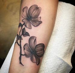 flakissflower