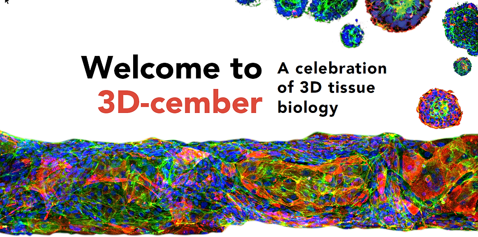 2020-11-02 13_49_53-MIM_3D_slides.pdf -