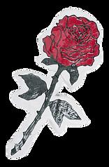 Claudia Holzinger_Fake Rose.png