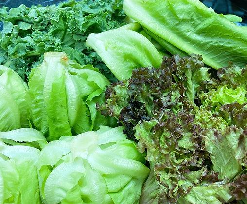Farmers Choice 有機沙律菜組合