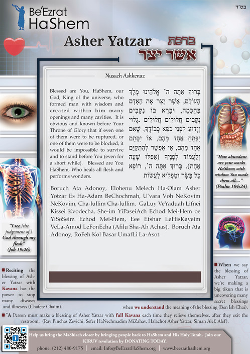 new nusach ashkenaz asher yatzar posters 8in x 12in x10 domestic