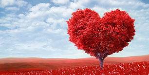 1440x900-the-tree-of-love.JPG