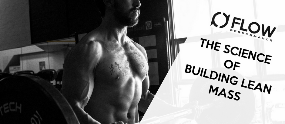 THE SCIENCE  OF  BUILDING LEAN MASS
