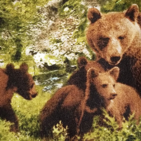 Grizzly Bear/ Toddler, Youth and Adult Masks