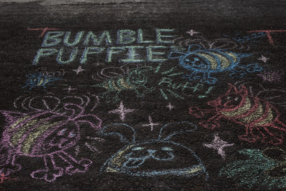 bnumble puppie chalk walk .jpg