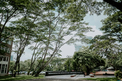 UPH College Green Campus