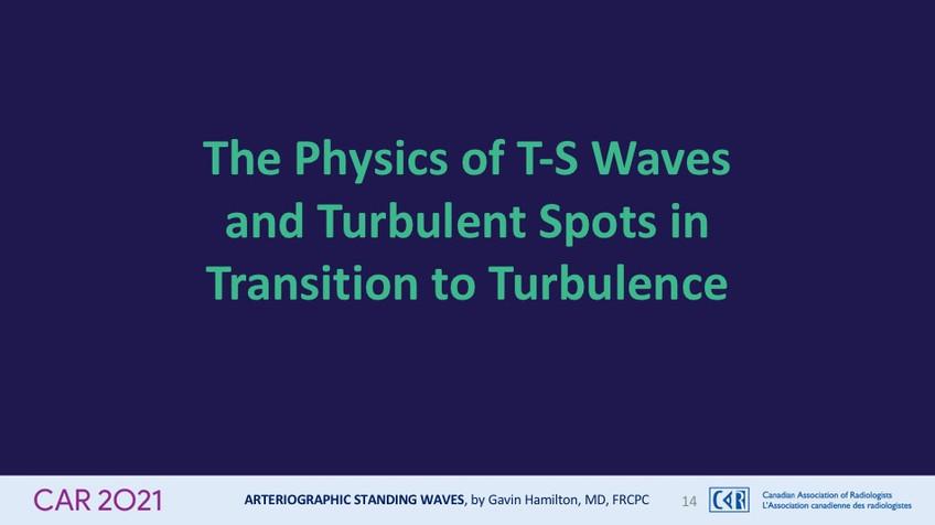 The Physics of T-S Wavesand Turbulent Spots inTransition to Turbulence