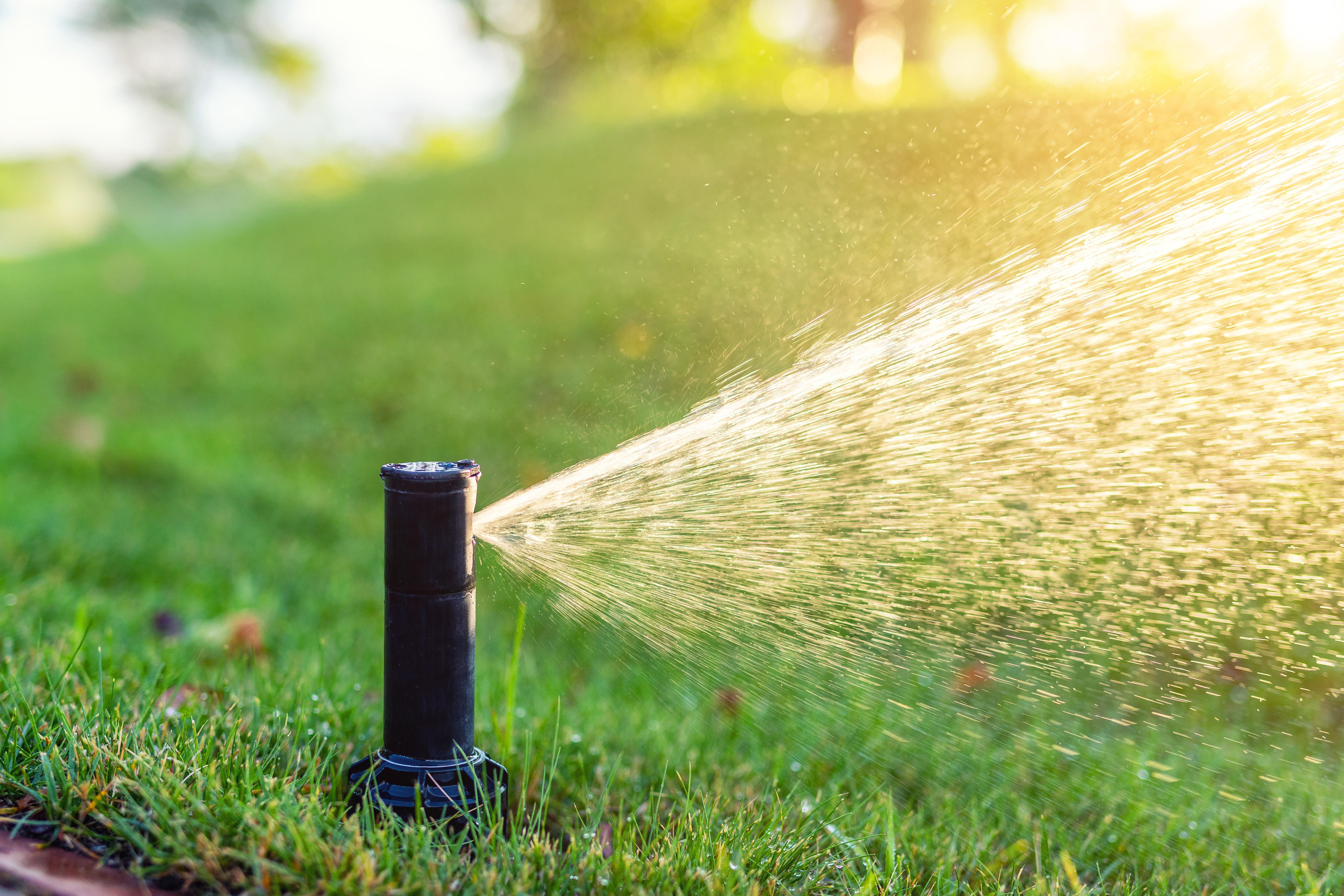 Irrigation System Consultations