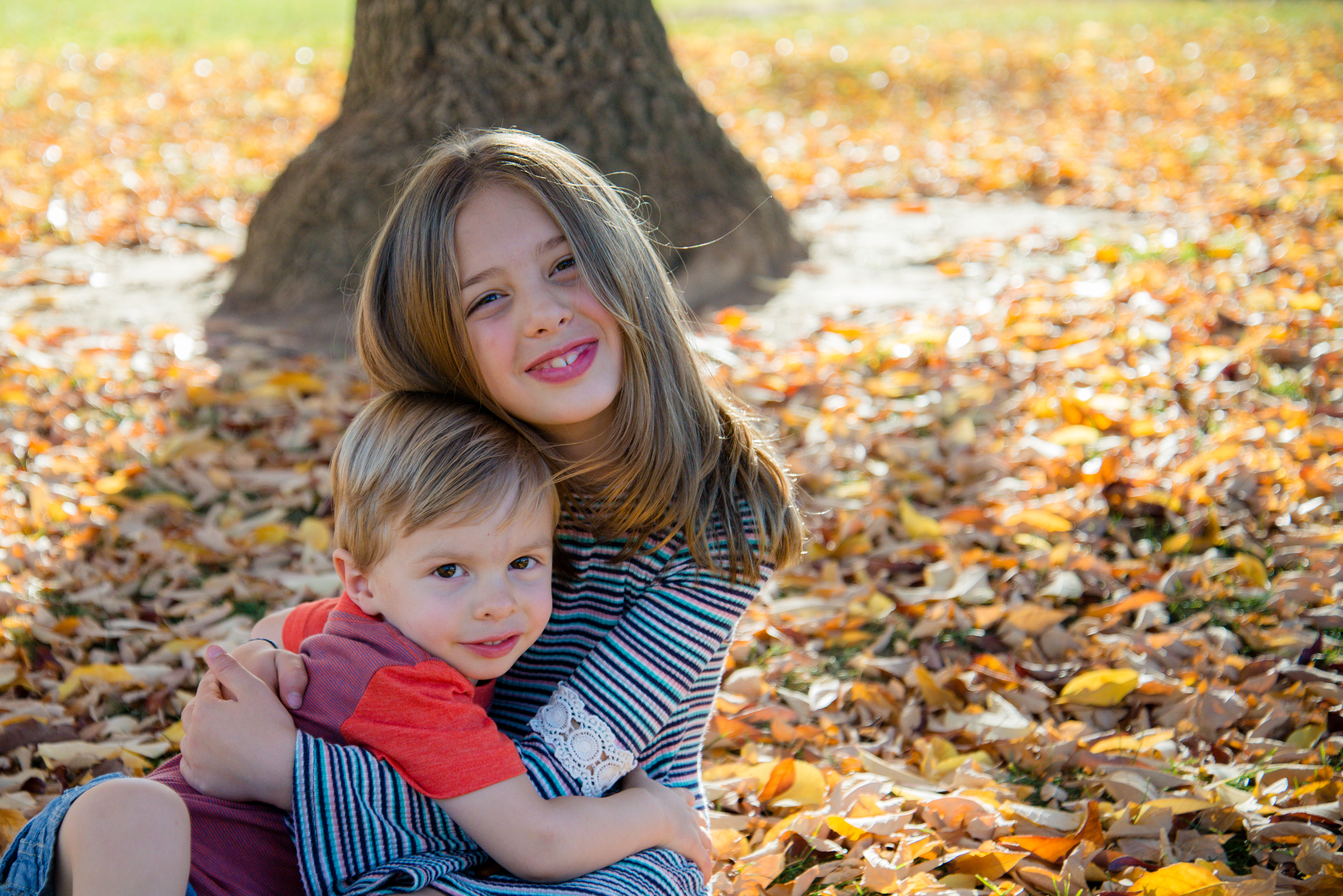 Girl hugs toddler brother in fall