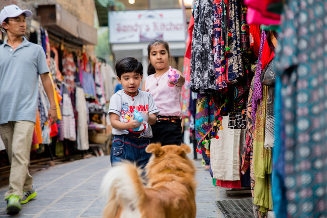 Kids squirt stray dog with waterguns in India