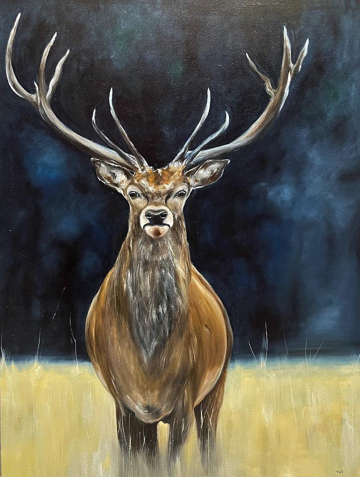 Deer portrait-2020-final.jpg