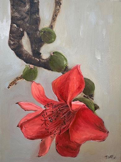 Red Kapok Flower No. 1, oil on panel-Tin