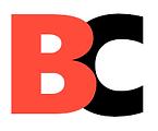 birchmore consulitng logo.png
