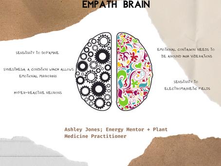 Take A Peek Inside The Empath Brain