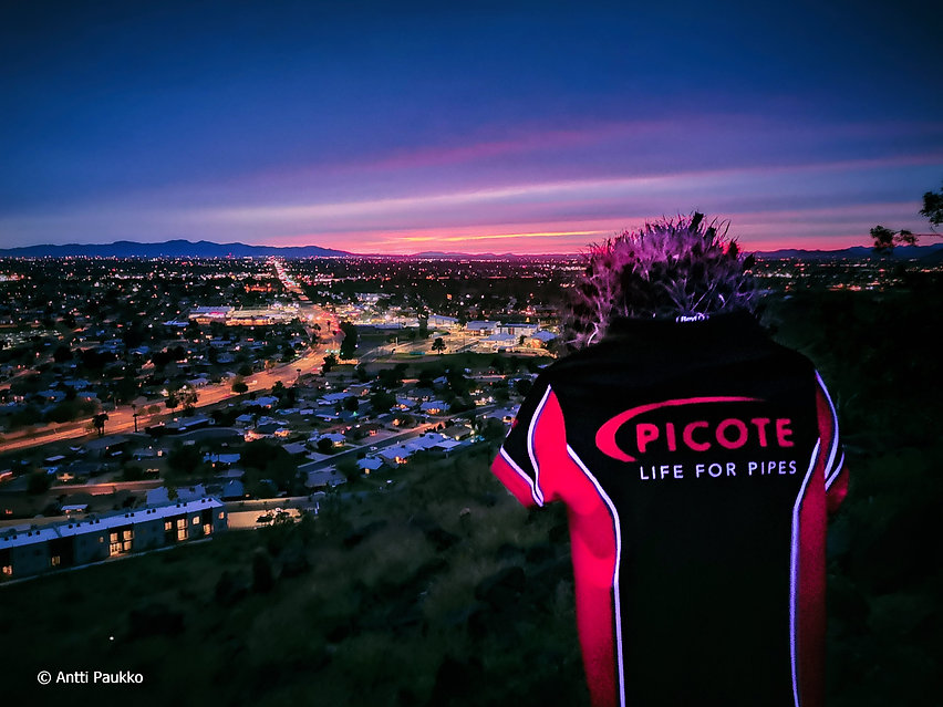 Picote_Phoenix_IMG_20200331_191005_edite
