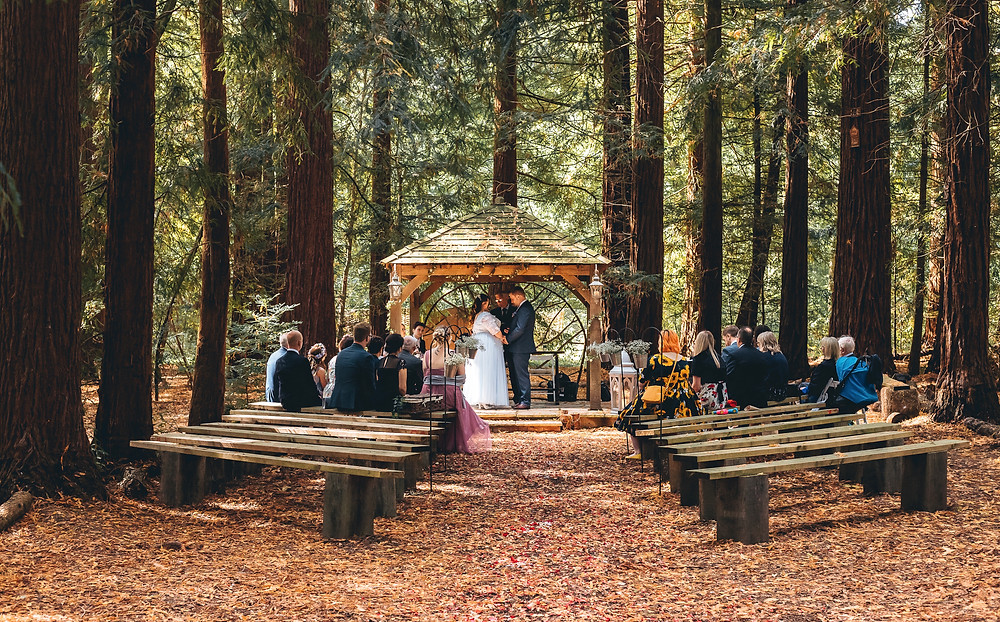 Bride in pale blue tulle and embroidered dress and groom in dark suit holding hands in wooden pagoda during their woodland wedding ceremony.  Guests sitting on wooden benches watching them.