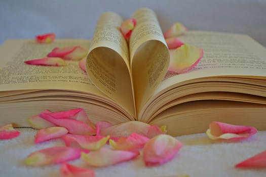 Open pages of a book making a heart shape and covered in scattered rose petals