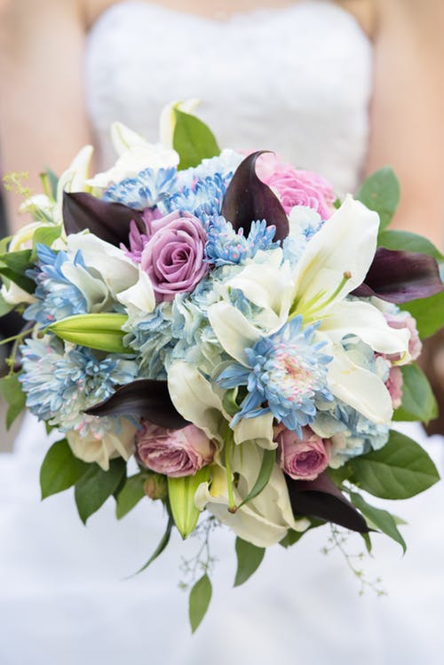 Bride holding bouquet which includes blue flowers